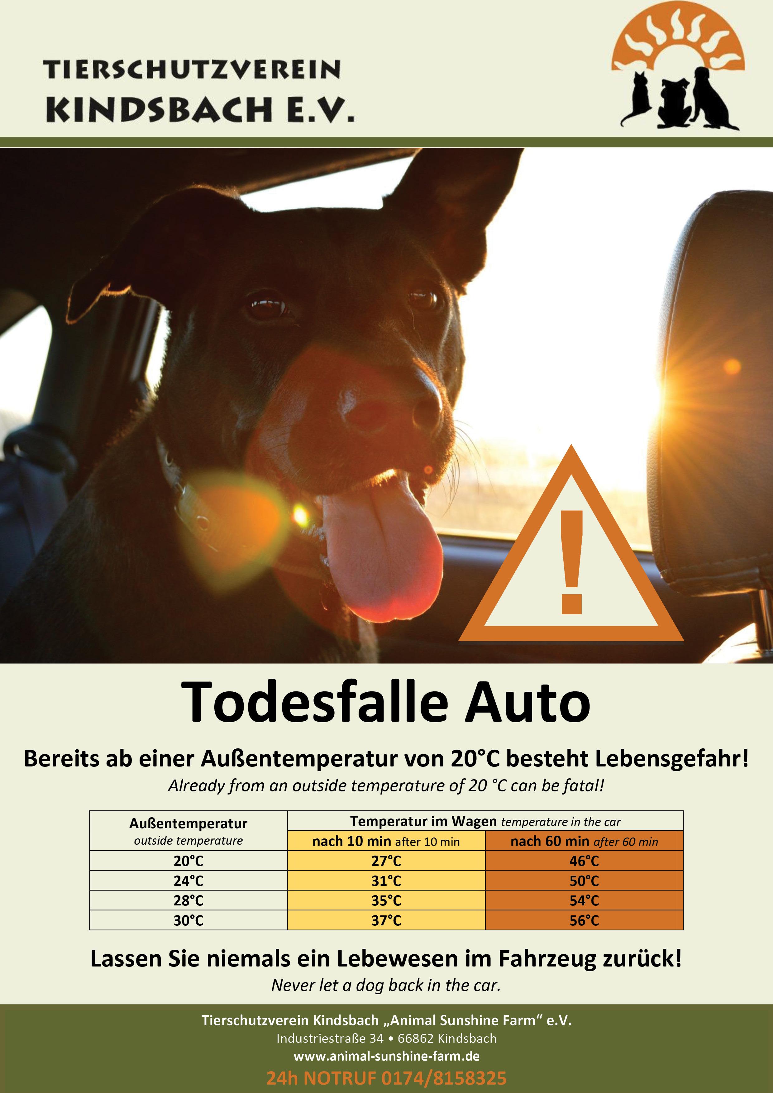 Plakat_TSV